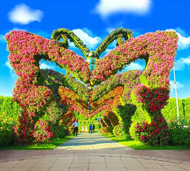 Butterfly Passage at the Dubai Miracle Garden