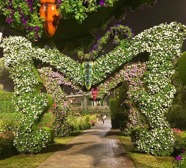 Photograph of Butterfly Passage at the Dubai Miracle Garden.