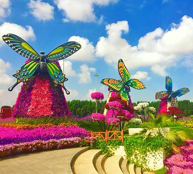 butterfly windmills at the dubai miracle garden - Dubai Miracle Garden
