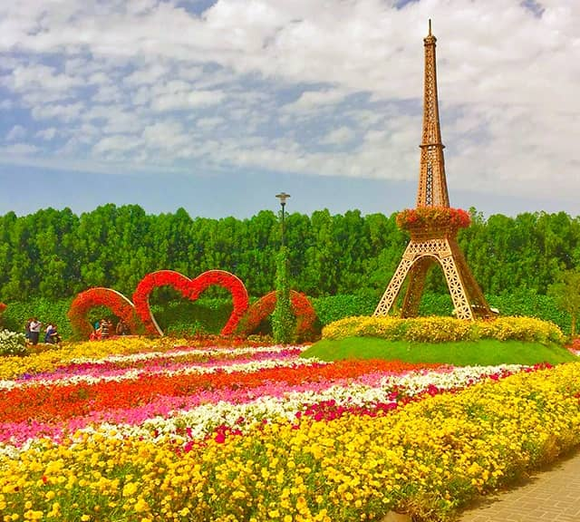 Eiffel Tower length from the ground is 35 feet at the Dubai Miracle Garden.