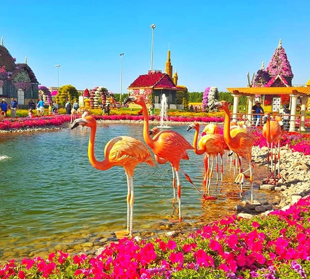 Flamingo Sculptures themselves are not decorated with any kind of flowers at the Dubai Miracle Garden.