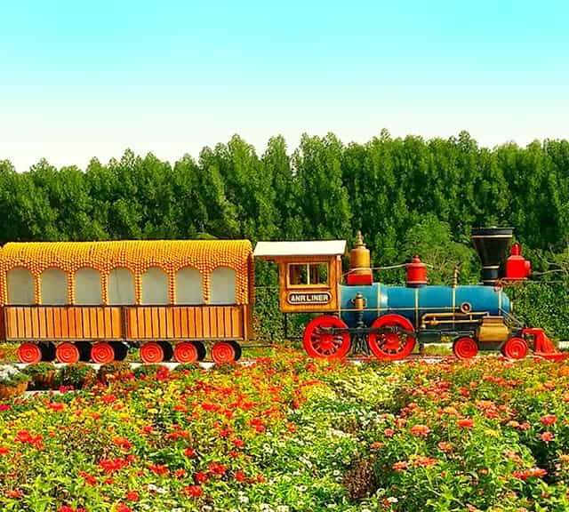 Introduction of Floral Train and its history at the Dubai Miracle Garden.