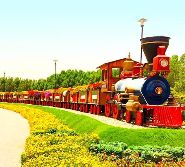 Photograph of the Floral Train at the Dubai Miracle Garden.