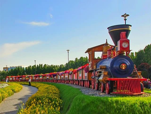 Size and length of the Floral Train at the Dubai Miracle Garden.