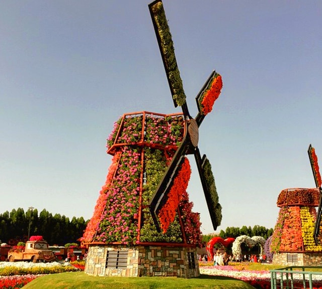Floral Windmills at the Dubai Miracle Garden