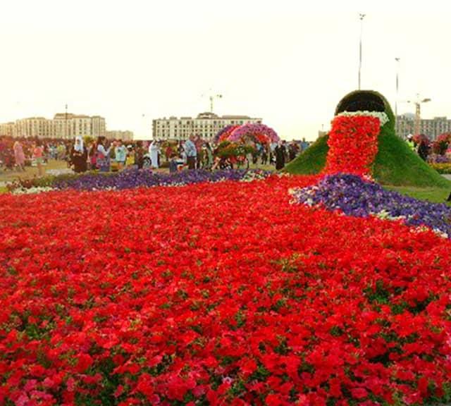 Flower Spilling Buckets Dubai Miracle Garden