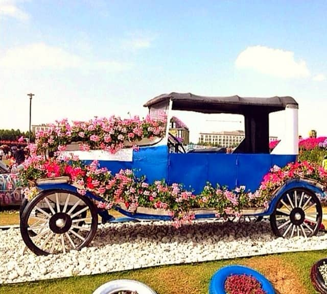 Blue colored floral version of Ford's Model-T Car at the Dubai Miracle Garden