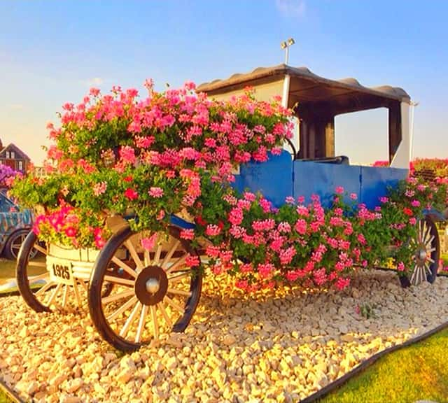 Photograph of Ford's Model-T Car at the Dubai Miracle Garden.