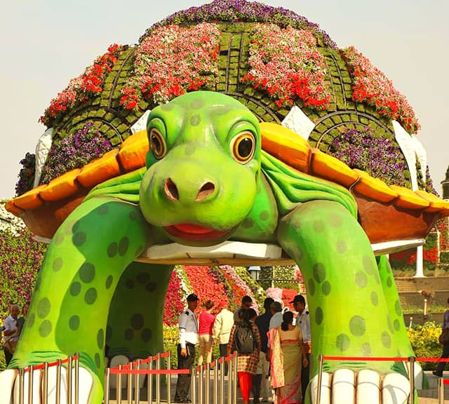 Giant Tortoise decorated with Petunia flowers in its sesaon six