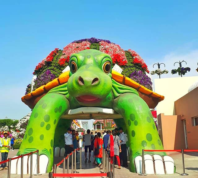 Giant Tortoise debut at Dubai Miracle Garden in its season six