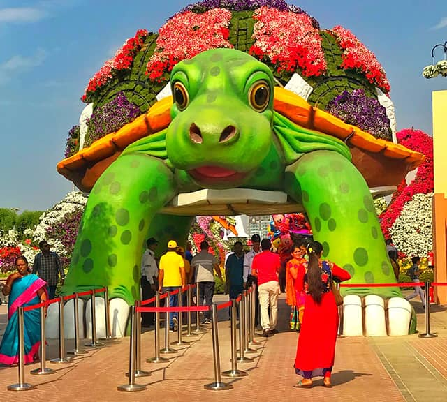 Giant Tortoise has a solid structure at Dubai Miracle Garden