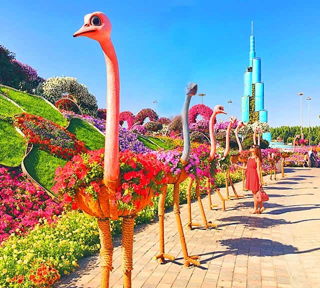 Dubai Miracle Garden flower sculptures