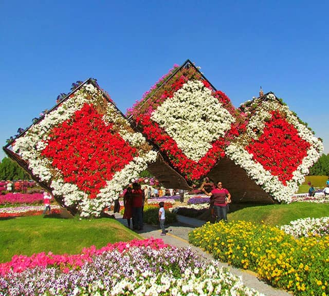 Dubai Miracle Garden ticket price