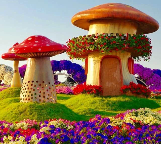 mushroom houses at dubai miracle garden - Miracle Garden Dubai