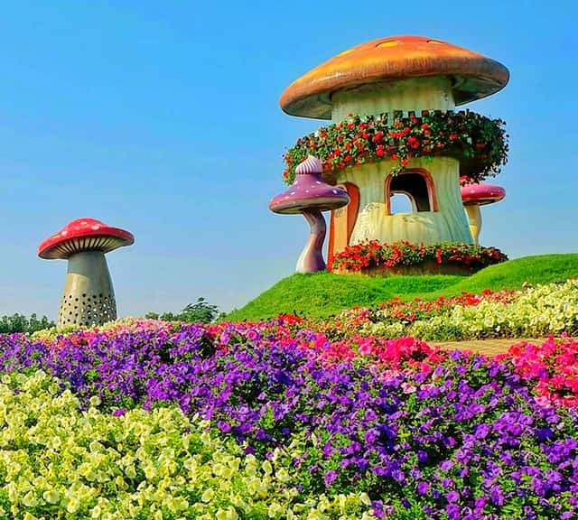 mushroom houses structure at the dubai miracle garden - Dubai Miracle Garden