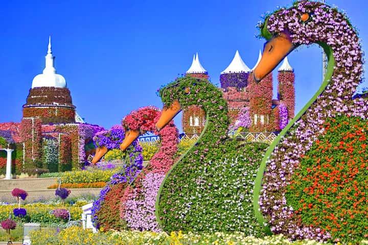 Opening Date Of Dubai Miracle Garden