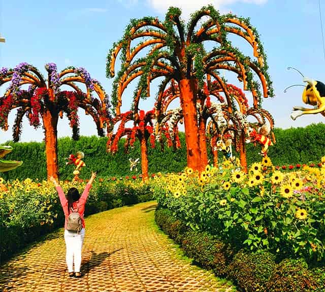 Palm Trees have a sophisticated structure at the Dubai Miracle Garden