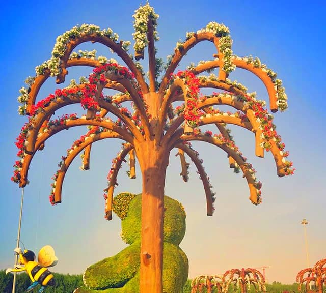 The Palm Trees are 20 feet high from the ground level at the Dubai Miracle Garden