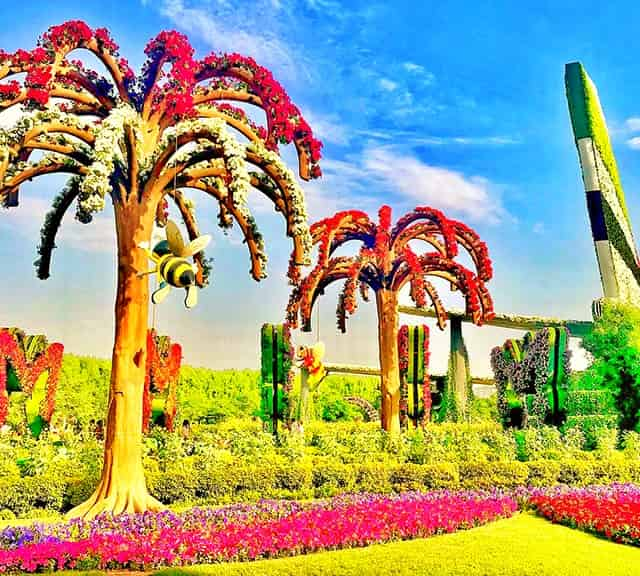 Palm Trees were first introduced in the season six of Dubai Miracle Garden.