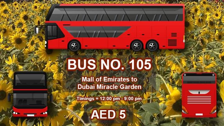 Public Transport Dubai Miracle Garden