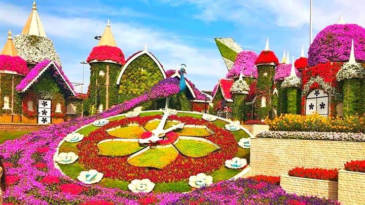 Timings Of Dubai Miracle Garden